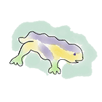 dessin dragon park güell